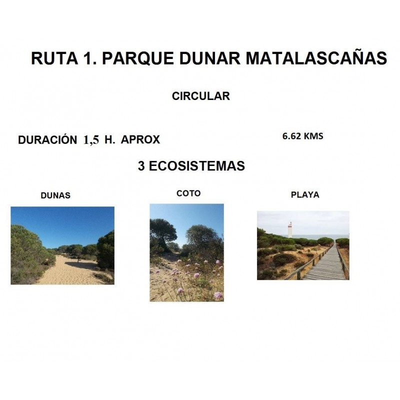 RUTA 1 PARQUE DUNAR