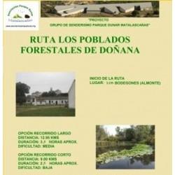 RUTA POBLADOS FORESTALES DE DOÑANA, LOS BODEGONES-LOS CABEZUDOS