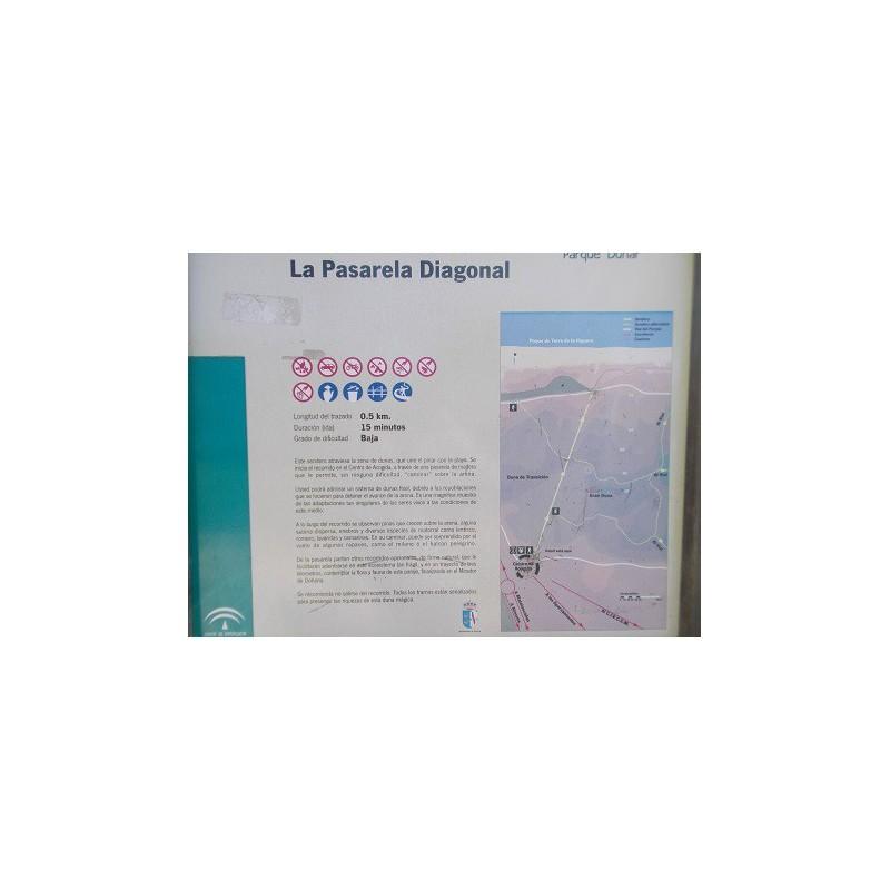 SENDERO PASARELA DIAGONAL