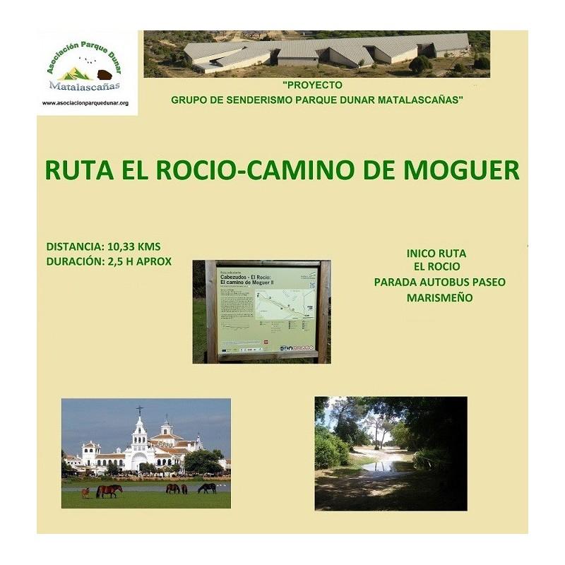 RUTA EL ROCÍO-CAMINO DE MOGUER