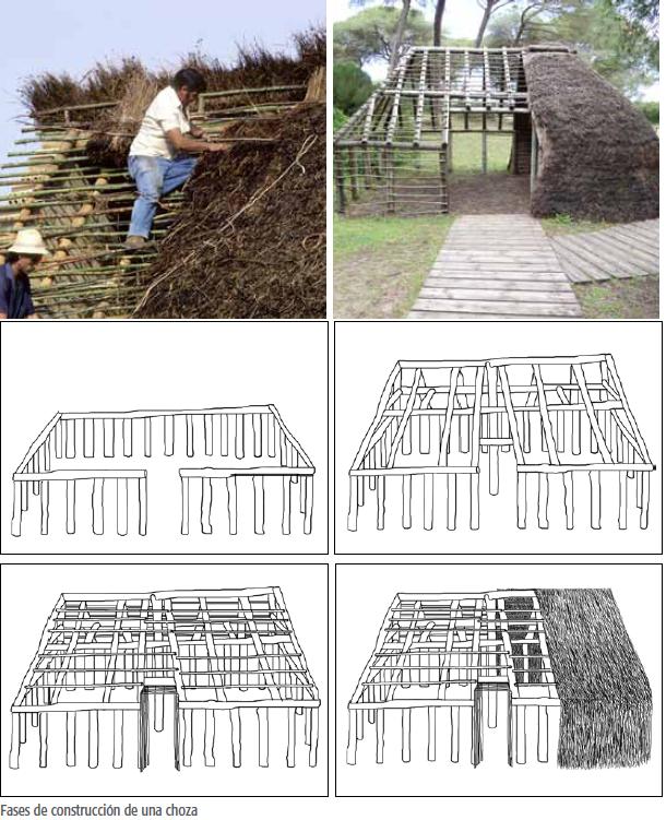 FASES DE LA CONSTRUCCION DE UNA CHOZA
