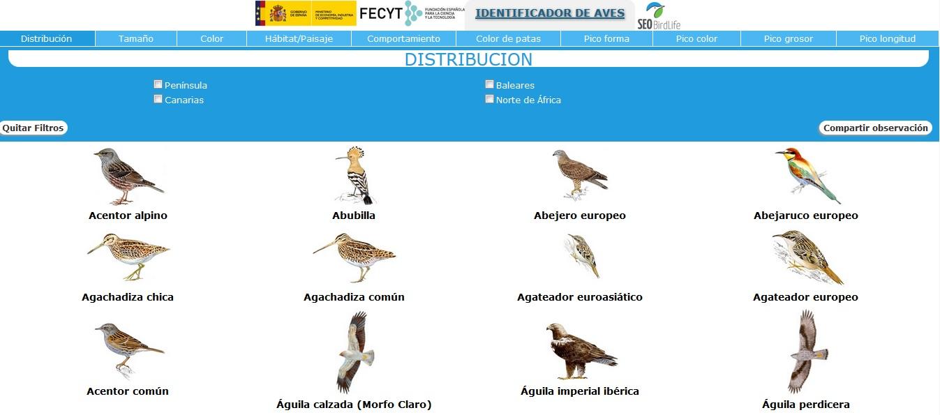 IDENTIFICADOR DE AVES SEO BIRDLIFE