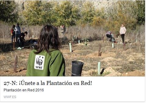 REFORESTACION WWF